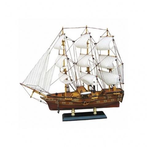 Model lodi 49x43