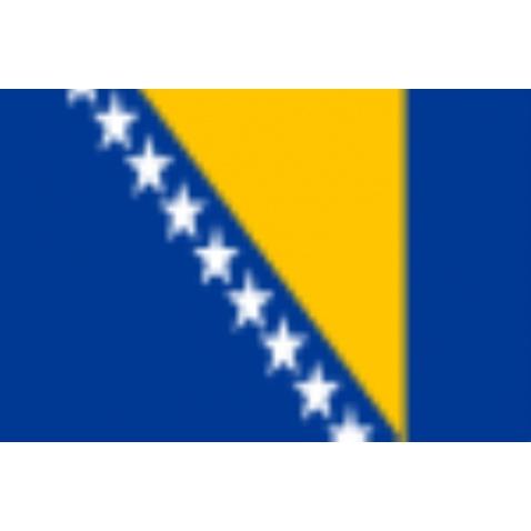Vlajka Bosna a Herzegovina 20x30cm